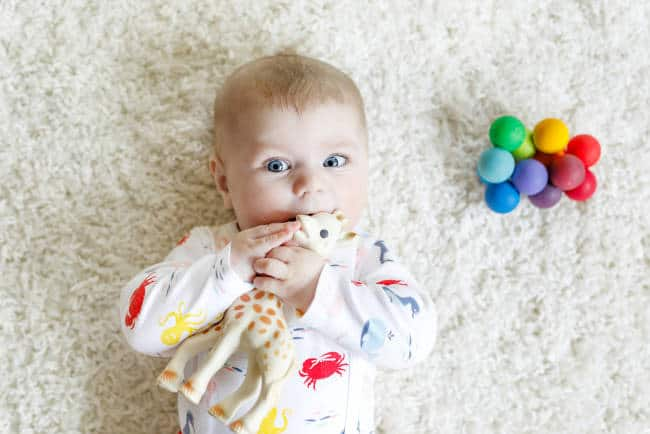 cute baby with giraffe and sensory ball toy